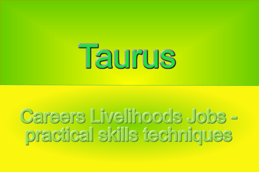 Taurus – Making the Best Use of WorkingStyles